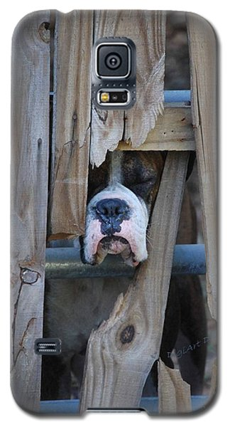 Psst Help Me Outta Here Galaxy S5 Case
