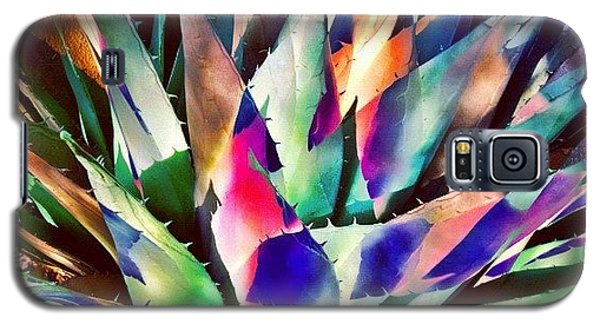 Psychedelic Agave Galaxy S5 Case by Paul Cutright