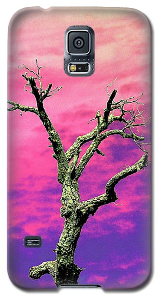 Psychedelic Tree Galaxy S5 Case by Richard Patmore