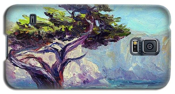 Pt. Lobos Beauty Galaxy S5 Case