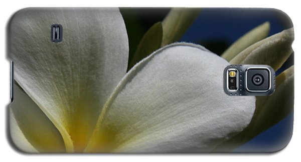 Pua Lena Pua Lei Aloha Tropical Plumeria Maui Hawaii Galaxy S5 Case