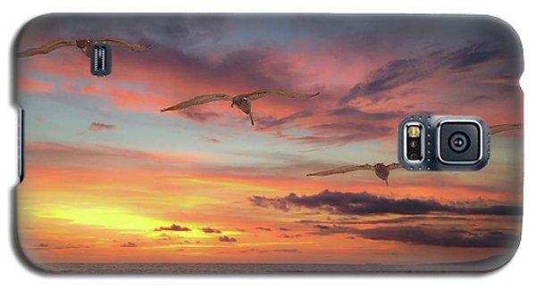 Puerto Vallarta Pelicans Galaxy S5 Case