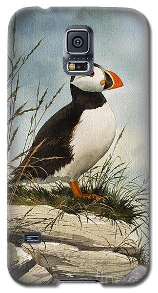 Puffin Galaxy S5 Case