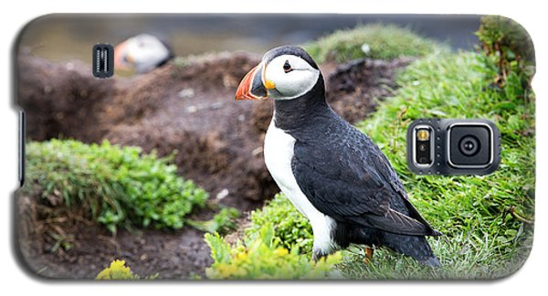 Puffin  Galaxy S5 Case by Jane Rix