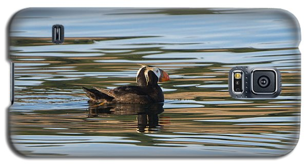 Puffin Reflected Galaxy S5 Case by Mike Dawson