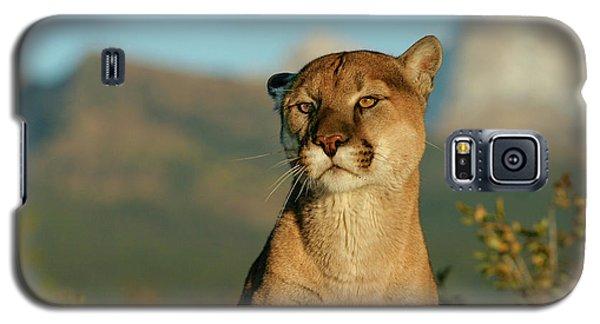 Puma Galaxy S5 Case