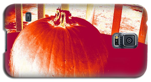 Pumpkin #1 Galaxy S5 Case