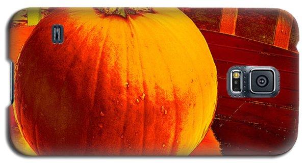 Pumpkin #4 Galaxy S5 Case