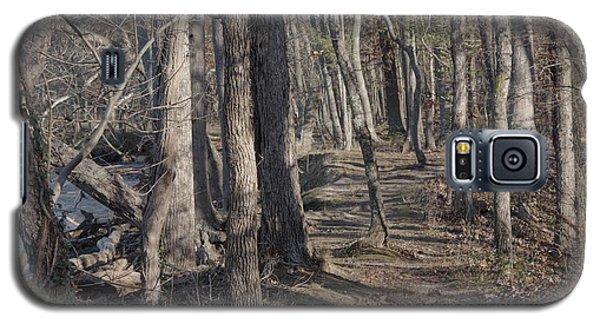 Pumpkin Ash Trail Galaxy S5 Case