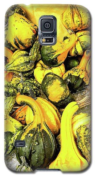 Pumpkin Family Galaxy S5 Case