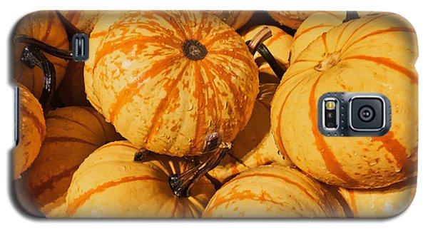 Pumpkin Harvest Galaxy S5 Case