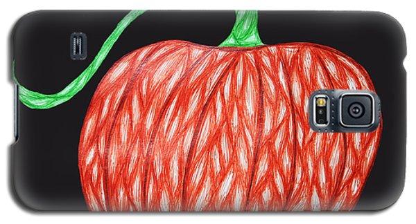 Pumpkin Galaxy S5 Case by Jamie Lynn