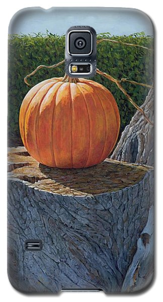 Pumpkin On A Dead Willow Galaxy S5 Case