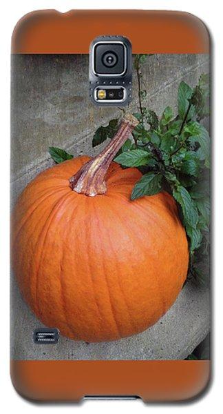 Pumpkin Galaxy S5 Case