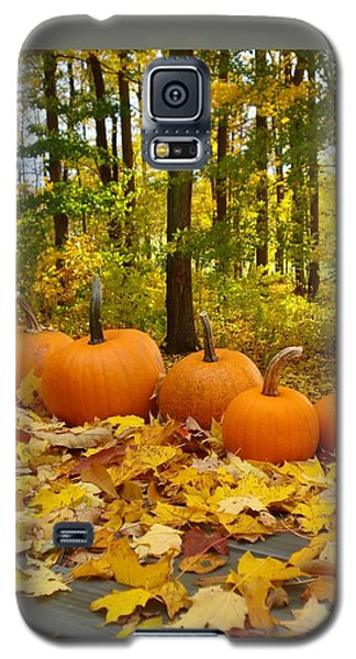 Pumpkins And Woods-ii Galaxy S5 Case