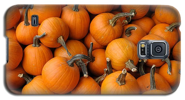 Galaxy S5 Case featuring the photograph Pumpkins by Bradford Martin