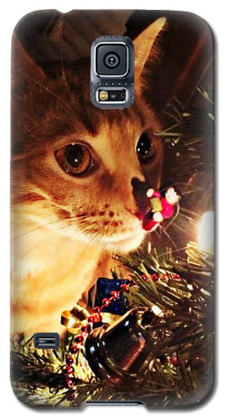 Pumpkin's First Christmas Tree Galaxy S5 Case by Kathy M Krause