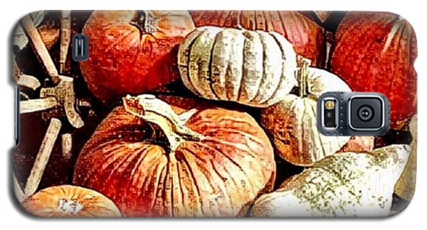 Pumpkins In The Barn Galaxy S5 Case