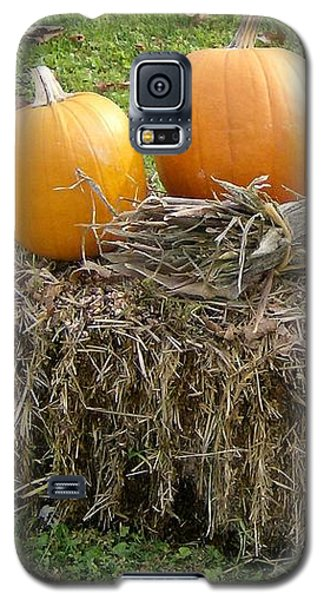Pumpkins On A Haystack Galaxy S5 Case by Skyler Tipton