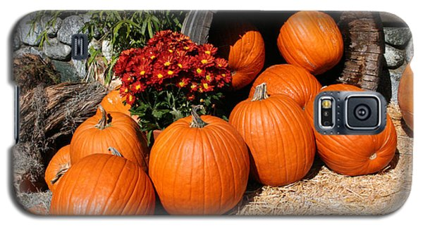 Galaxy S5 Case featuring the mixed media Pumpkins- Photograph By Linda Woods by Linda Woods