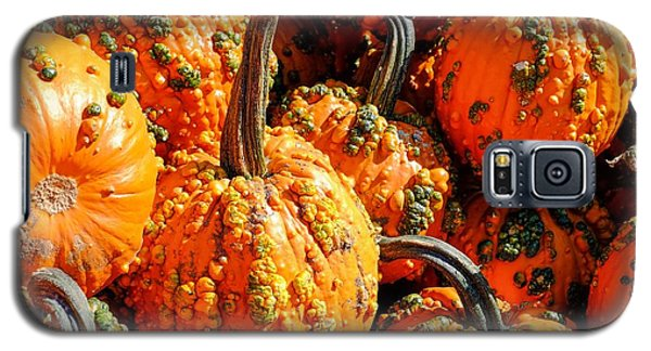 Pumpkins With Warts Galaxy S5 Case