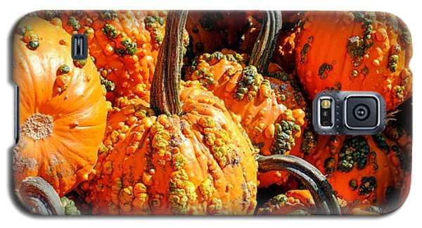 Pumpkins With Warts Galaxy S5 Case
