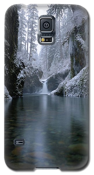 Punch Bowl Winter Galaxy S5 Case