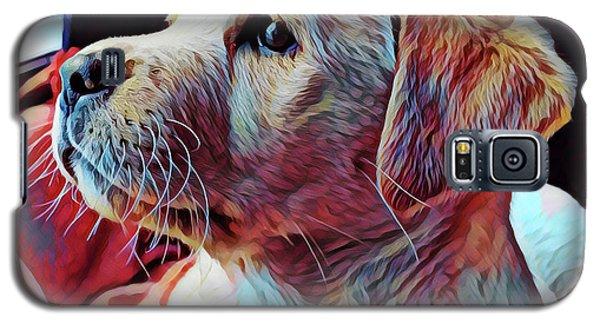 Puppy Dog Galaxy S5 Case by Gary Grayson