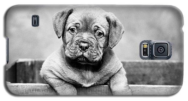 Puppy - Monochrome 3 Galaxy S5 Case