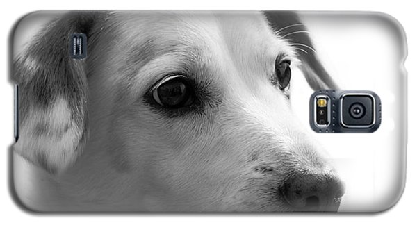 Puppy - Monochrome 4 Galaxy S5 Case
