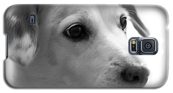 Puppy - Monochrome 4 Galaxy S5 Case