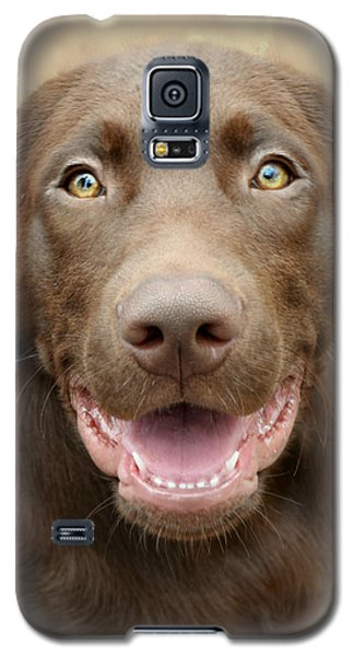 Puppy Power Galaxy S5 Case by Kathy M Krause