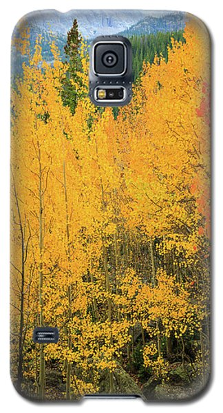 Galaxy S5 Case featuring the photograph Pure Gold by David Chandler