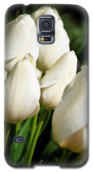 Purity II Galaxy S5 Case by Tamyra Ayles