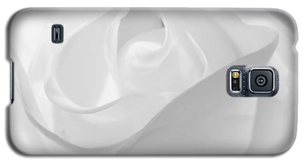 Purity - White Rose Galaxy S5 Case