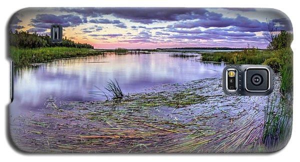 Purple Bay Galaxy S5 Case