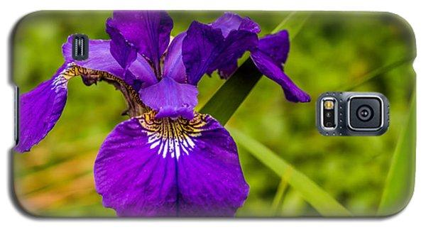 Purple Beauty Galaxy S5 Case