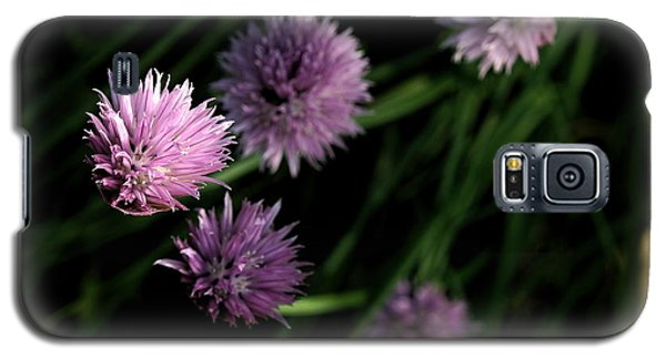 Galaxy S5 Case featuring the photograph Purple Chives by Angela Rath