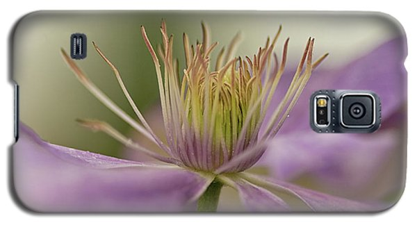 Galaxy S5 Case featuring the photograph Purple Clematis Macro by Jacqi Elmslie