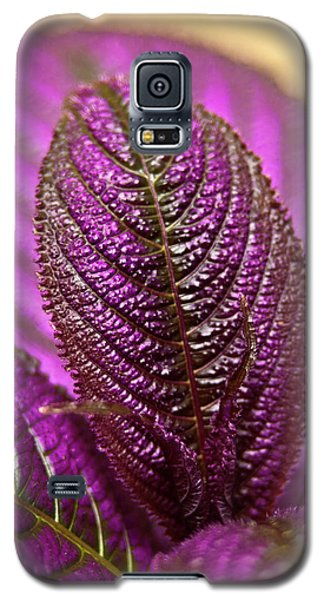 Purple Coleus Galaxy S5 Case
