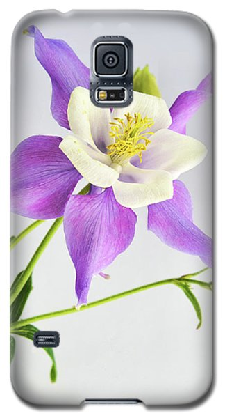 Galaxy S5 Case featuring the photograph  Purple Columbine by Ann Bridges