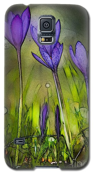 Galaxy S5 Case featuring the photograph Purple Crocus Flowers by Jean Bernard Roussilhe
