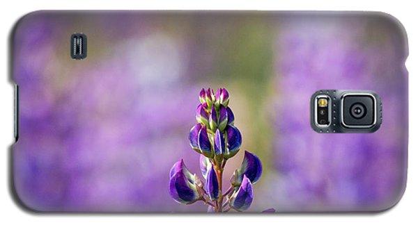 Purple Galaxy S5 Case