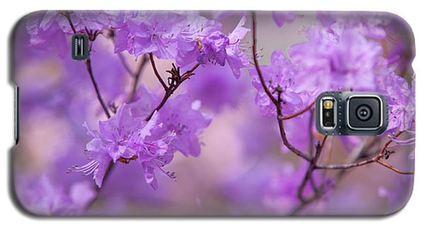 Galaxy S5 Case featuring the photograph Purple Delight. Spring Watercolors by Jenny Rainbow