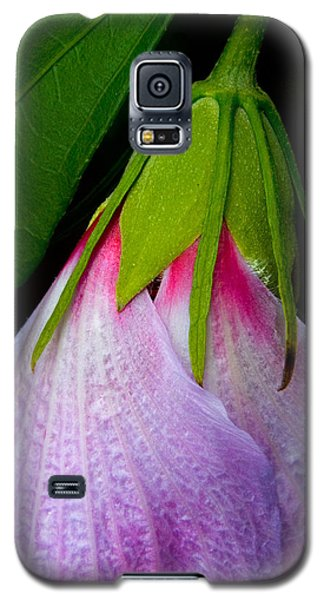 Purple Dew Galaxy S5 Case