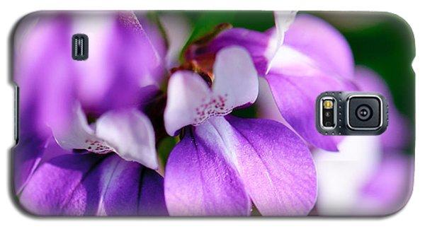 Purple Dream Galaxy S5 Case