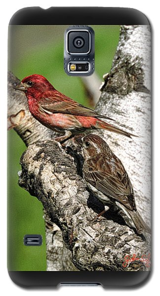 Galaxy S5 Case featuring the digital art Purple Finches by John Selmer Sr