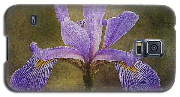 Purple Flag Iris Galaxy S5 Case by Patti Deters