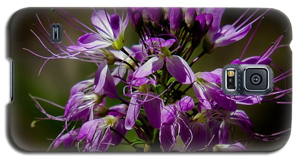 Purple Flower 1 Galaxy S5 Case