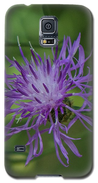 Purple Flower 8 Galaxy S5 Case